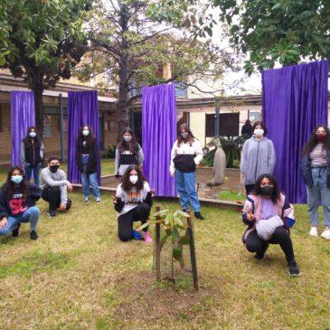 El 8M, dia de la Dona, a les nostres associacions